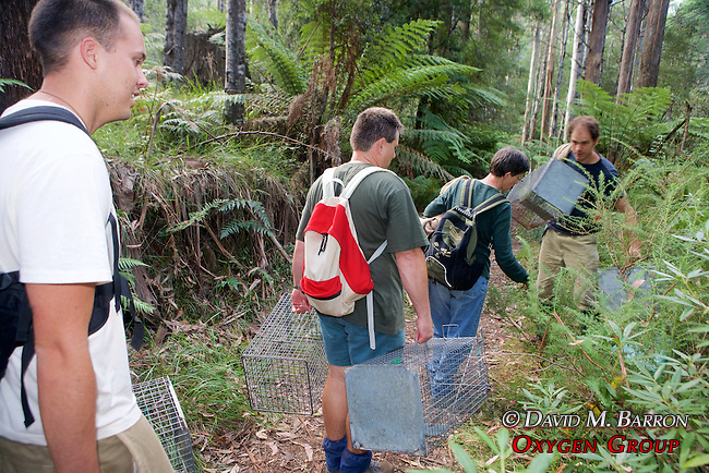 Earthwatch Team Carrying Traps Out Of Field