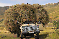 Transportation of collected hay for animal feeding