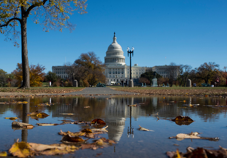 UNITED STATES - NOVEMBER 18: Autumn colors and warm temperatures grace Capitol Hill on Monday, Nov. 18, 2013. (Photo By Bill Clark/CQ Roll Call)