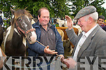 Done Deal..Paudie Cronin, Killorglin and Christy Clifford, Caragh Lake, strike a deal during the Kenmare Fair day on Friday.   Copyright Kerry's Eye 2008