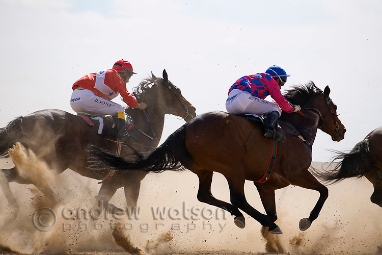 Horse racing in the outback at the Birdsville Cup Races.  Every September the small town of Birdsville hosts one Australia's most iconic horse racing festivals.  Birdsville, Queensland, AUSTRALIA.  © Andrew Watson / Axiom
