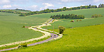 Country road in chalk landscape towards Aldbourne from near Ramsbury, Wiltshire, England, UK