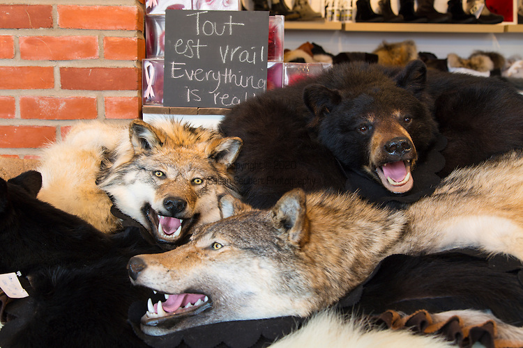 The Bilodeau store located in the Petit Champlain district of Vieux Quebec specializes in fur and fur products, Quebec City, Quebec, Canada