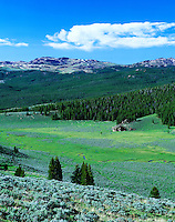 Crooked Creek, Bighorn National Forest, Wyoming