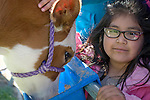 Gladys Cervantes Mejia, 6, of Fremont Elementary School in Carson City, Nev., participates in the cow plop fundraiser, where she was able to meet Buttercup, a Holstein Ayrshire mix Friday, April 15, 2016.<br />