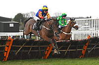 Queen Among Kings ridden by Page Fuller clears the last in  The That Friday-Ad Feeling Novices' Hurdle during Horse Racing at Plumpton Racecourse on 10th February 2020