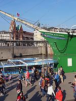 Museumsschiff Rickmer Rickmers im Hafen, Hamburg, Deutschland, Europa<br /> Museums ship Rickmer Rickmers, port of  Hamburg, Germany,  Europe