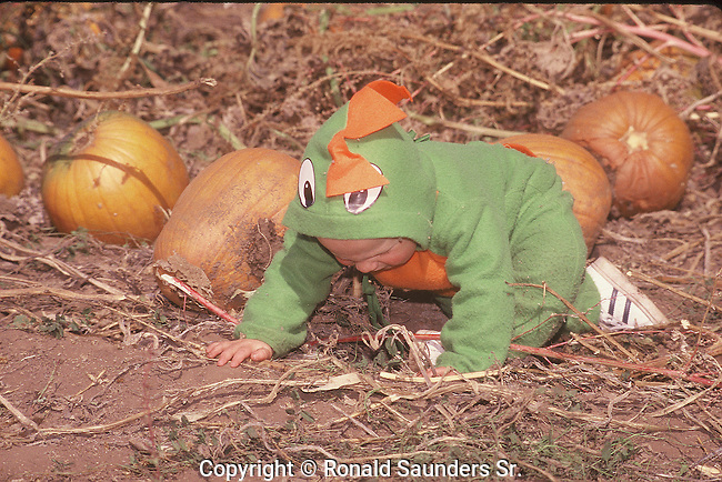 TODDLER SEARCHING FOR THE PERFECT PUMPKIN AT FALL FESTIVAL