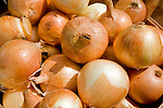 Close-up of organic onions at the Coventry farmers market, Connecticut