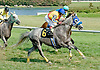 Independent George 1st time by at Delaware Park on 8/31/10