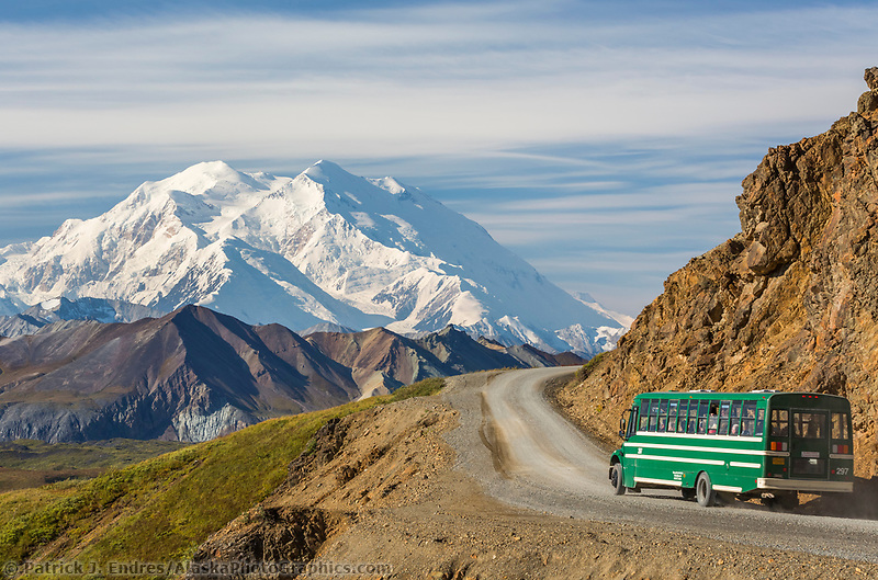 Tour bus travels the Eielson bluffs on the Denali park road, with Denali visible along the Alaska Range horizon.