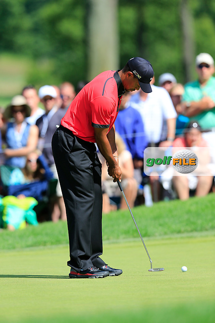 Tiger Woods (USA) putts on the 10th green during Sunday's Final Round of the 2013 Bridgestone Invitational WGC tournament held at the Firestone Country Club, Akron, Ohio. 4th August 2013.<br /> Picture: Eoin Clarke www.golffile.ie