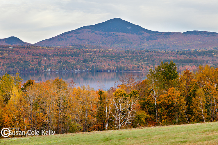 Fall foliage in Mt Blue State Park, Weld, ME, USA