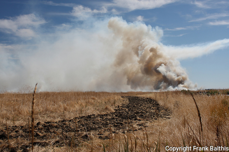 fire at Grizzly Island Wildlife Area, Cordelia