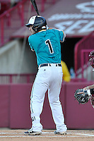 Shortstop Michael Paez (1) of the Coastal Carolina Chanticleers bats in a game against the South Carolina Gamecocks on Tuesday, April 5, 2016, at Founders Park in Columbia, South Carolina. The South Carolina catcher is John Jones. South Carolina won, 4-2. (Tom Priddy/Four Seam Images)
