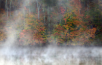 Michael McCollum<br /> 11/10/17<br /> Fall Color and morning mist , Knob Creek, tributary to the Tennessee River, south Knoxville Tennessee.
