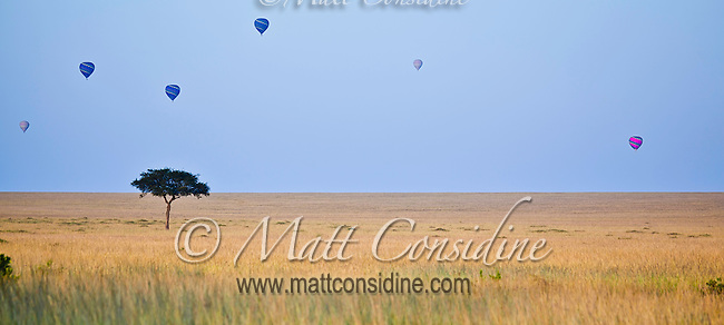 Balloons floating high in the early morning light over grassland savanna of the Masai Mara Reserve, Kenya, Africa,(photo by Wildlife Photographer Matt Considine)