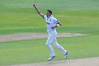 Peter Siddle of Essex celebrates taking the wicket of Gary Ballance during Essex CCC vs Yorkshire CCC, Specsavers County Championship Division 1 Cricket at The Cloudfm County Ground on 4th May 2018