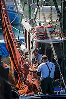 """France, Aquitaine, Pyrénées-Atlantiques, Pays Basque,   Saint-Jean-de-Luz : Au port de pêche le Thonier Canneur """"Aïrosa"""" débarque  ses filets  pour la pêche à la sardine ou au chinchard  qui va servir d'appat  vivant (peïta) pour la pêche au thon à la canne - En fond la maison de l'Infante//  France, Pyrenees Atlantiques, Basque Country,  Saint Jean de Luz : Fishing port,  Line tuna vessel """"Airosa"""" landed his nets for fishing sardines or mackerel will use as live bait (Peita) for tuna fishing cane - In the background the house of the Infanta -  Auto N°:2014-149, Auto N°:2014-150, Auto N°:2014-151, Auto N°:2014-152, Auto N°:2014-153, Auto N°:2014-154, Auto N°:2014-155"""