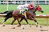 Vigilante Law winning at Delaware Park on 7/10/13