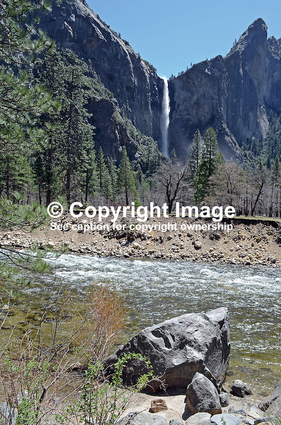 Yosemite National Park, California, USA, waterfall, parkland, 201304181587<br /> <br /> Copyright Image from Victor Patterson, 54 Dorchester Park, Belfast, UK, BT9 6RJ<br /> <br /> Tel: +44 28 9066 1296<br /> Mob: +44 7802 353836<br /> Voicemail +44 20 8816 7153<br /> Skype: victorpattersonbelfast<br /> Email: victorpatterson@me.com<br /> Email: victorpatterson@ireland.com (back-up)<br /> <br /> IMPORTANT: If you wish to use this image or any other of my images please go to www.victorpatterson.com and click on the Terms &amp; Conditions. Then contact me by email or phone with the reference number(s) of the image(s) concerned.