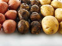 Mixed fresh un-cooked potatoes