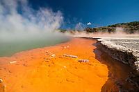 Rotorua New Zealand Images