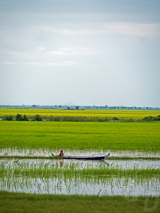 On the road between Siem Reap and Battambang the agriculture region of Cambodia