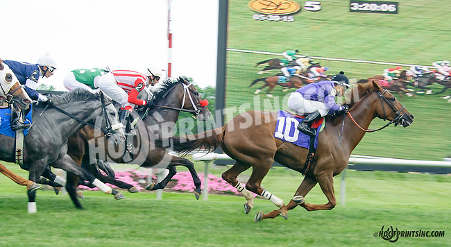 Back Away winning at Delaware Park on 5/30/15