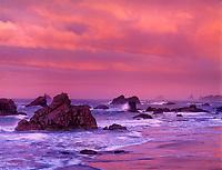 769550402 sunrise light turns the sea stacks and coastal beach a soft pink at harris state beach near brookings oregon