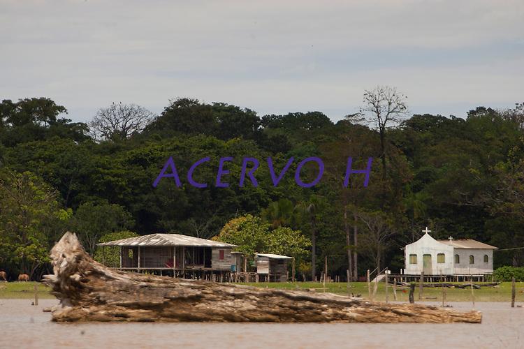 Fazendas com búfalos criados em campos naturais alagados boa parte do ano na região das ilhas Cavianas  na foz do Amazonas,onde o rio leva sedimentos ao mar criando grandes manguezais no litoral da região. A força das águas, aliada ao fenômeno da Pororoca na foz do Amazonas causa o desmoronamento das margens  carregando consigo toras de madeira que são jogadas na beira da vila Limão. A região das ilhas Cavianas, onde fica a vila,  é um dos últimos pedaços de terra no rio Amazonas em seu encontro com o  Atlântico.Marajó, Chaves, ilhas Caviana, Pará, Brasil.Foto: Paulo Santos16/06/2011