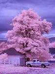 Day's End, Escalante, Utah (Infrared)