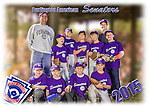 2015 Burlington American Senators