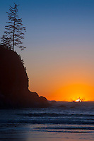 Sunset on the Oregon Coast near Cannon Beach watching sunset sink into ocean with silhouette trees and waves crashing in the distance
