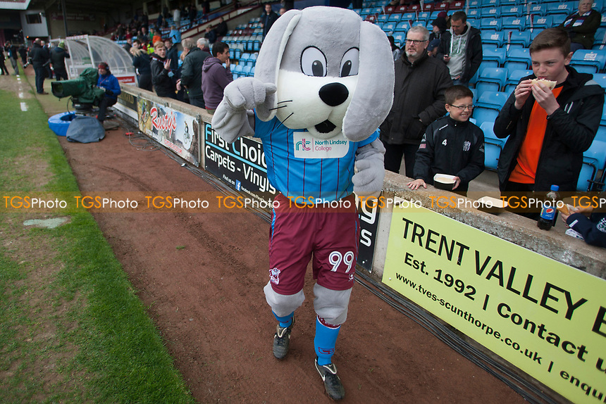 Scunny bunny raises hopes during Scunthorpe United vs Millwall, Sky Bet EFL League 1 Play-Off Football at Glanford Park on 7th May 2017