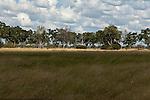CHOBE NATIONAL PARK - SAVUTI MARSH, BOTSWANA - MAY 16, 2010: The Savuti Marsh area constitutes the western stretch of the Chobe National Park in northern Botswana. (Photo by Dirk Markgraf)