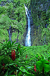 Tahitian Waterfall