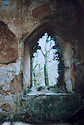 19/10/14 <br /> <br /> Collect photo showing the church interior in 1992 after Bob's wife discovered it.<br /> <br /> How one man&rsquo;s twenty-two year crusade to save a derelict church was bedeviled with problems but proved to be anything but folly.<br /> <br /> An Anglo Saxon church where unique ancient wall paintings were uncovered will soon begin the next phase of restoration . Church Warden, Bob Davey, 85 still opens the church to visitors every day and continues to oversee the restoration.<br /> <br /> Full copy here:<br /> <br /> http://www.fstoppress.com/articles/bob-davey-st-marys-church/<br /> <br /> All Rights Reserved - F Stop Press.  www.fstoppress.com. Tel: +44 (0)1335 300098