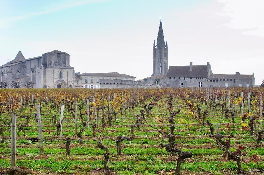 Vineyard. Collegiale church. Twer of the monolithic church. Chateau Clos Fourtet, Saint Emilion, Bordeaux, France