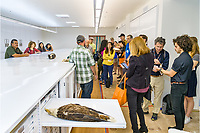 "(Photo by Don Milici, Freelance Photographer)<br /> <br /> As part of Occidental College's Homecoming & Family Weekend, photo ""Inside the Moore Lab of Zoology Bird Collection (Session 1B)"" for alums and faculty to take a rare insider's view of the Moore Lab's world-renowned collection of 65,000 bird and mammal specimens – a unique research and teaching resource for a liberal arts college, Friday, Oct. 18, 2019 at the Anderson Center for Environmental Sciences (formerly called the Moore Laboratory of Zoology in the BioScience Building).<br /> <br /> (Photo by Don Milici, Freelance Photographer)"