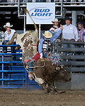 J.W. Harris, 515, Cody PRCA rodeo, 7/4 perf. Photo by Andy Watson. All Photos (C) Watson Rodeo Photos, INC. Any use must have written Permission.