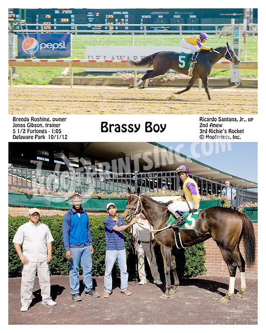Brassy Boy winning at Delaware Park on 10/1/12