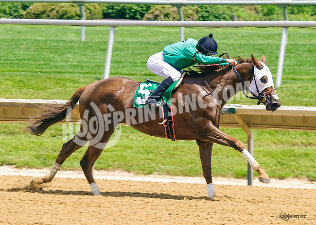 Flash Song winning at Delaware Park on 6/20/16