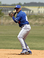 April 1, 2004:  Second baseman Jose Flores of the Los Angeles Dodgers organization during Spring Training at Dodgertown in Vero Beach, FL.  Photo copyright Mike Janes/Four Seam Images