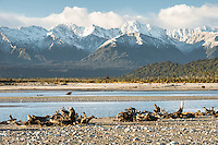 Driftwood on Gillespies Beach with Southern Alps in background, Westland Tai Putini National Park, UNESCO World Heritage Area, West Coast, New Zealand, NZ