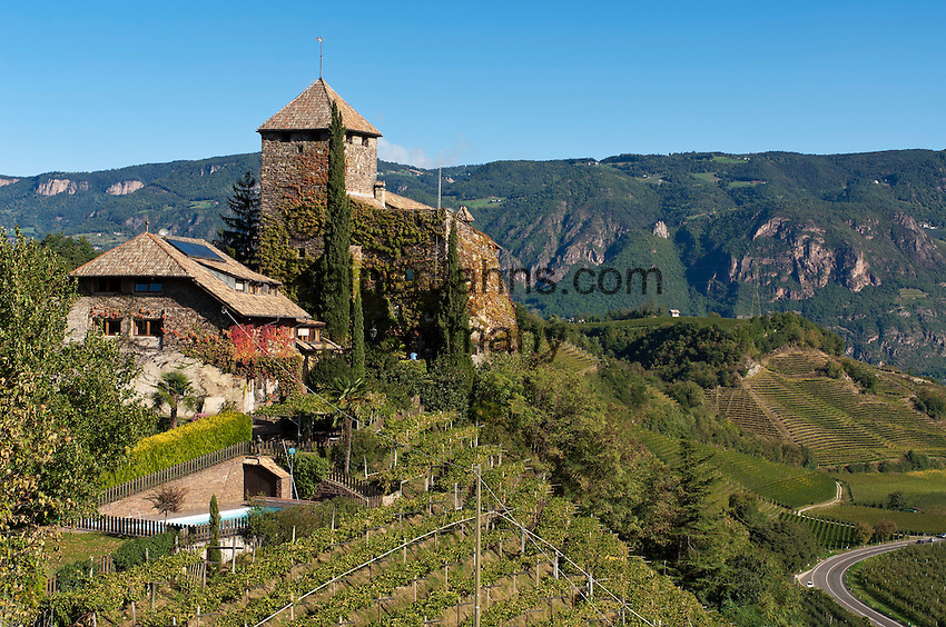 Italy, South Tyrol (Alto Adige), Appiano sulla Strada del Vino, below district St. Pauls is Castle Warth surrounded by vineyards at the South Tyrolean Wine Route and Eppan Castle Route | Italien, Suedtirol, Eppan, unterhalb St. Pauls steht das Schloss Warth umgeben von Weinbergen an der Suedtiroler Weinstrasse und der Eppaner Burgenstrasse