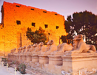 Sunset on Temple Walls, Karnak Temple, Processional Way with Ram Sphinxes, Luxor, Ancient City of Thebes, Egypt