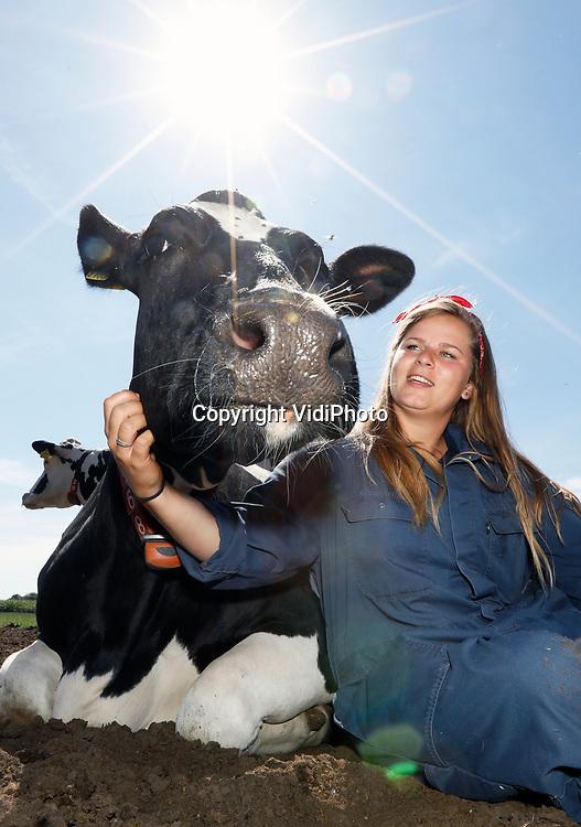 """Foto: VidiPhoto<br /> <br /> VOORST – Het loopt donderdag -en de komende weken- storm bij boerderij Noord Empe in Voorst bij Apeldoorn. Het koeknuffelen is populairder dan ooit. Doordat veel Nederlanders dit jaar in eigen land blijven en boeren veel in de publiciteit zijn, neemt het koeknuffelen een enorme vlucht. Noord Empe was 19 jaar geleden de eerste boerderij waar burgers konden liefkozen met de 700 kilo zware dieren. Inmiddels is er sprake van een hernieuwde belangstelling is. Volgens Reindert Boekesteijn en Nina Poot, die het koeknuffelen drie jaar geleden hebben overgenomen van de vorige eigenaar, is het publiek razend enthousiast. De boerderij telt 120 melkoeien, waarvan zo'n 80 procent van de dieren onderdeel is van de knuffelsessie. Volgens Poot worden mensen vaak emotioneel als de dieren het knuffelen op hun manier beantwoorden. """"We krijgen hier mensen die nog nooit een koe van dichtbij hebben gezien. Andersom vinden de koeien dit zelf ook erg leuk."""""""