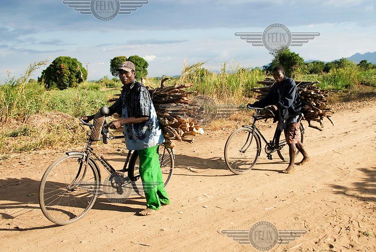 Men walk their bicycles taking firewood to a market.