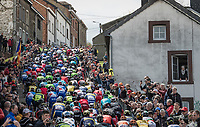 peloton up the iconic Côte de Saint-Roch / Houffalize<br /> <br /> 103rd Liège-Bastogne-Liège 2017 (1.UWT)<br /> One Day Race: Liège › Ans (258km)